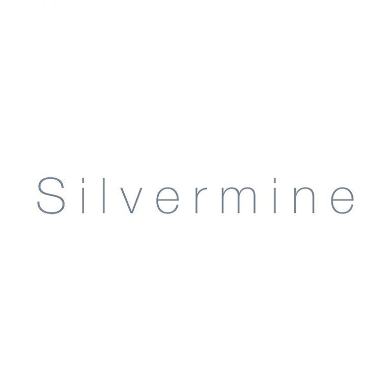 silvermine arts link